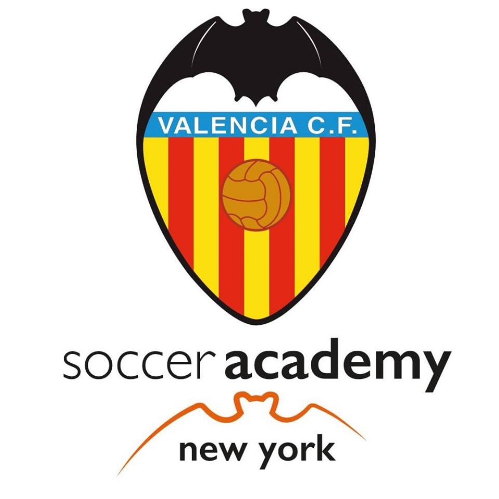 Valencia Open Academy In New York City